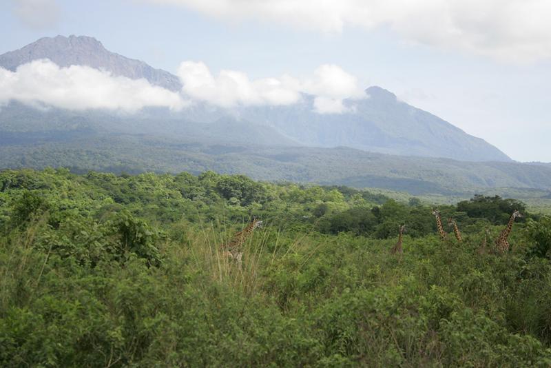 Tanzania July 2008-116.jpg