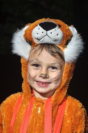 Halloween Trick-or-Treat Visitors 2014