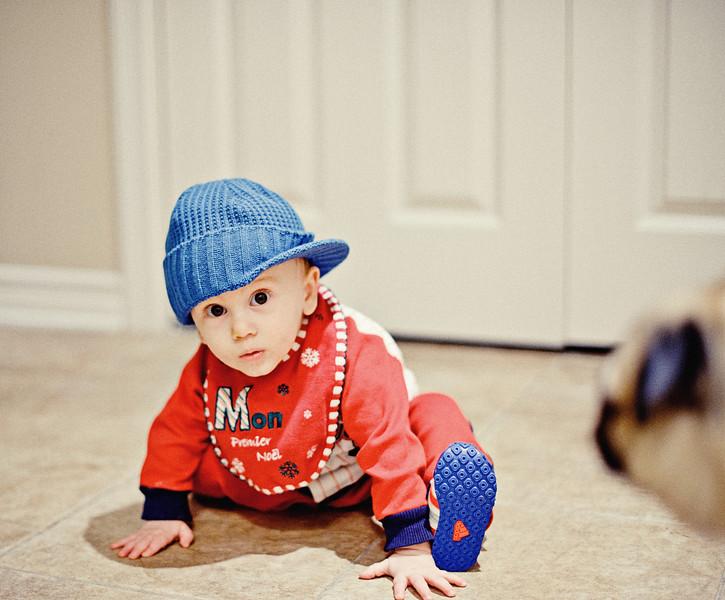 Milo at 8 months 4 days-4.jpg