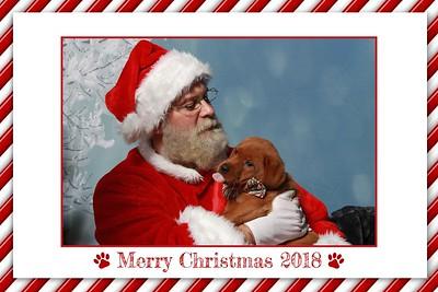 Pup Pics with Santa Paws
