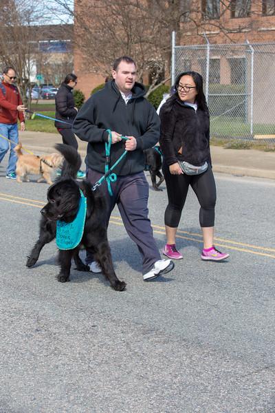 Richmond Spca Dog Jog 2018-762.jpg