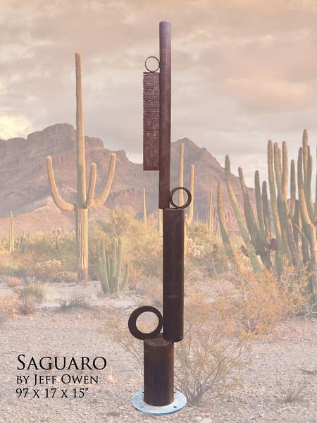 Saguaro (In an exhibitioin)