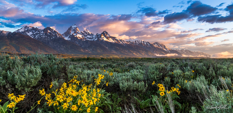 Early morning light on the Tetons