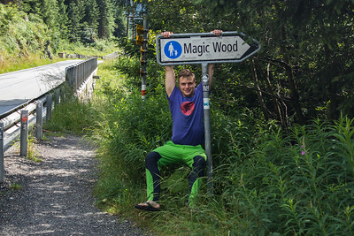 01 Magic Wood, Grimselpass
