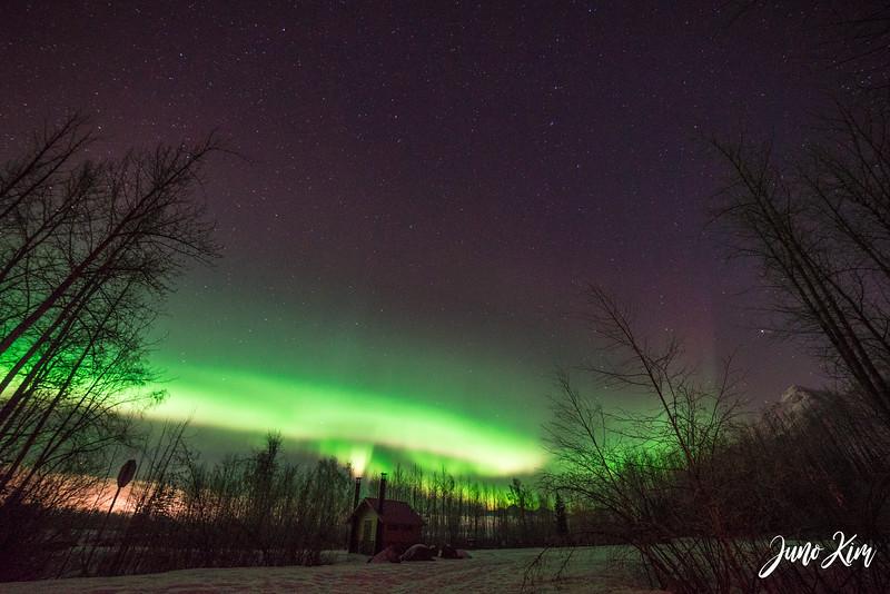 2019.02.01_Northern Lights-6106087-Juno Kim.jpg
