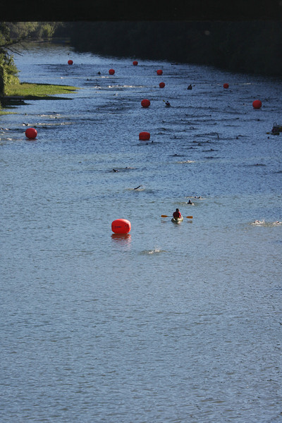 The swim doesn't look very far, when you are standing on the bridge