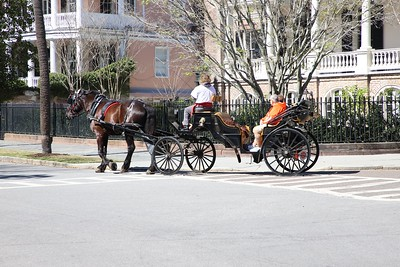 Charleston Feb 25 2019