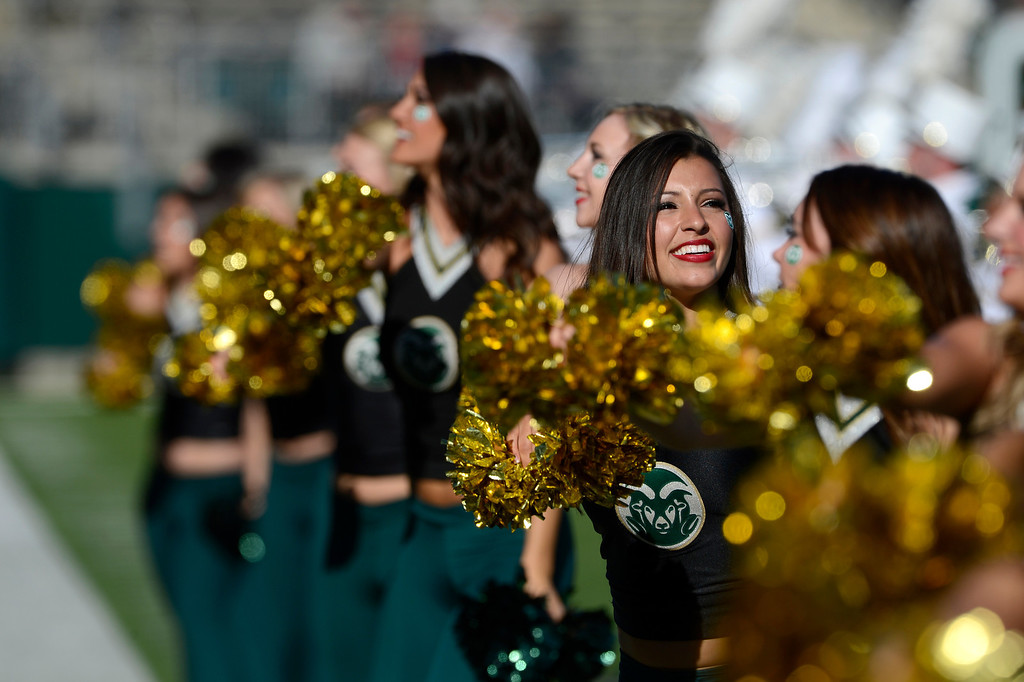 . The  Colorado State Golden Poms during the game against Air Force Saturday afternoon at Hughes Stadium, November 30, 2013. (Photo By Andy Cross/The Denver Post)