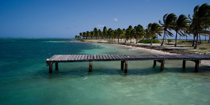 Pier and palm trees on the beach, Half Moon Caye, Lighthouse Reef Atoll, Belize