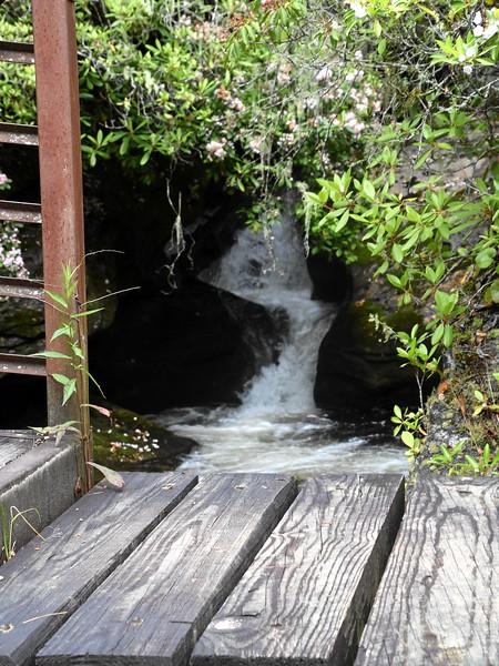 chatuga_river_2017_035.jpg
