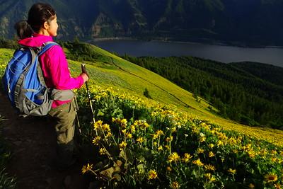 A Hike Everyday!