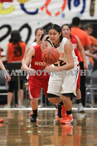 Varsity Girls vs Wooster 01-24-2014