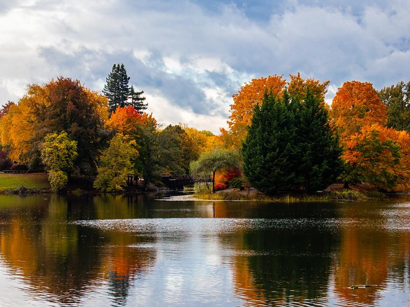 Lake Sacajawea, Longview, WA IMG_0516.jpg