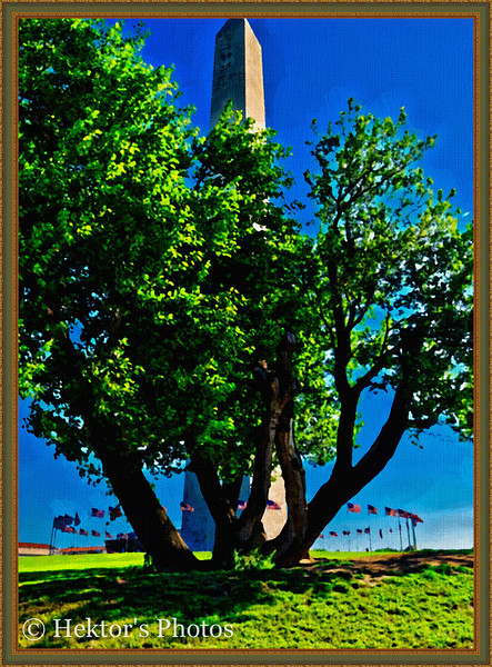 Washington Monument-9.jpg