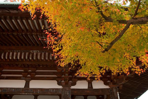 Ishiyama-dera — 石山寺