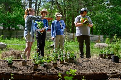 2021-05-22 WPPA Demo Garden First Planting