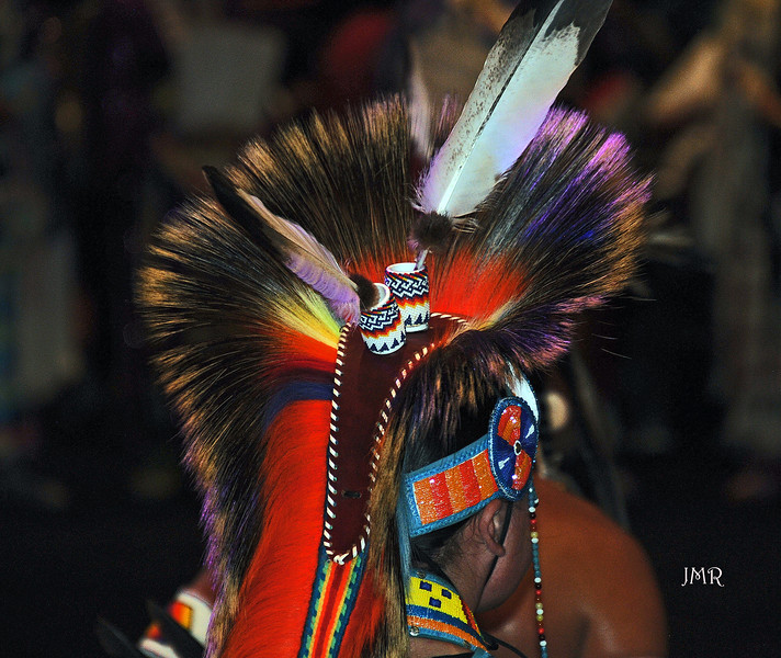 05  POW WOW Head feathers .jpg