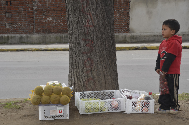Boy Selling Fruit