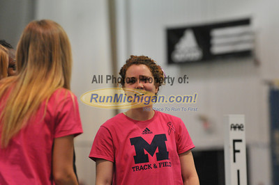 Michigan's Seniors - 2013 Silverston Invitational