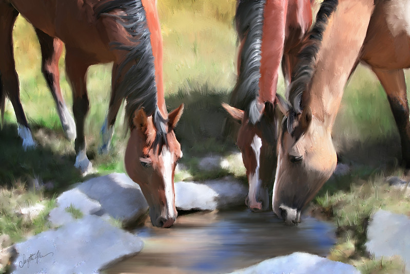 Horses to Paint_0618 Final.jpg