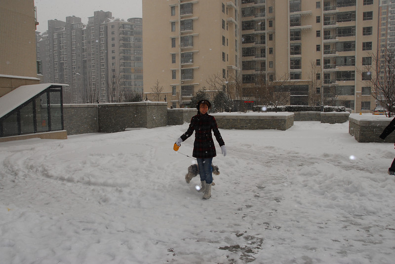 [20100103] 1st 2010 Snow in Beijing (7).JPG