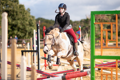 New Forest Riding Centre - 3rd November 2018