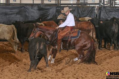 Sunday 25k Novice Horse
