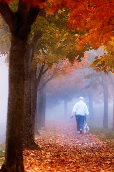 © Paul Conrad/ Pablo Conrad Photography - A woman walks her dog into the morning fog at the Boarwalk in Bellngham, Wash.