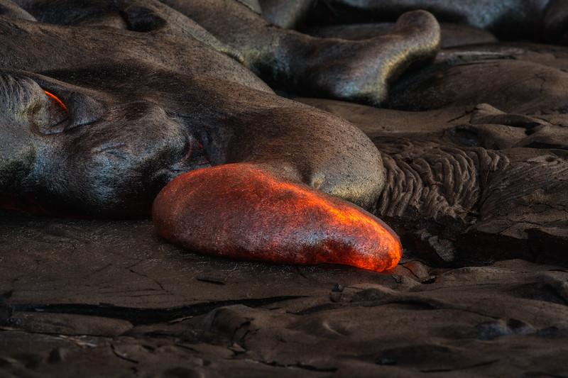 Lava Slug