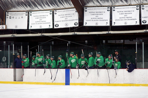 Reserve Hockey vs. Hockey for Non-Hockey Players