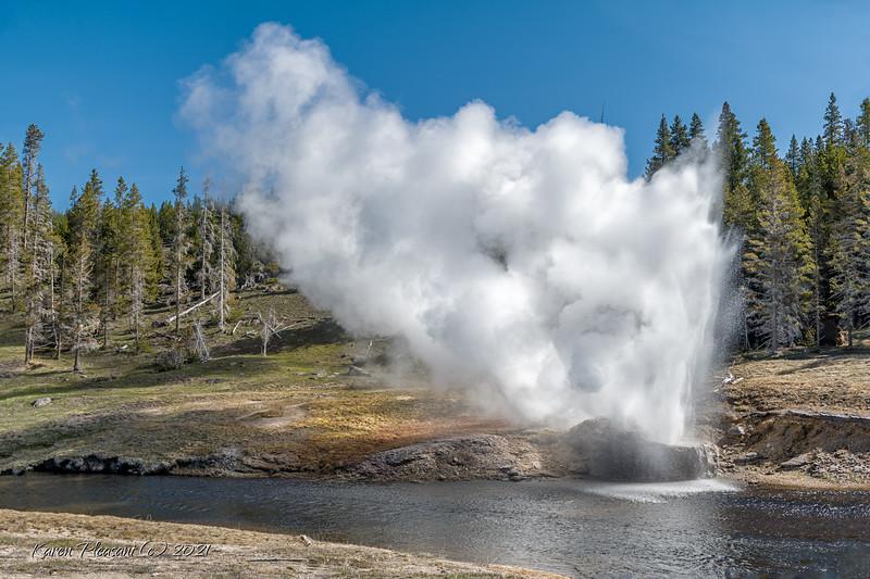Yellowstone  - 2021
