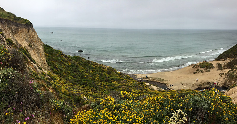 fun things to do in northern california - point reyes