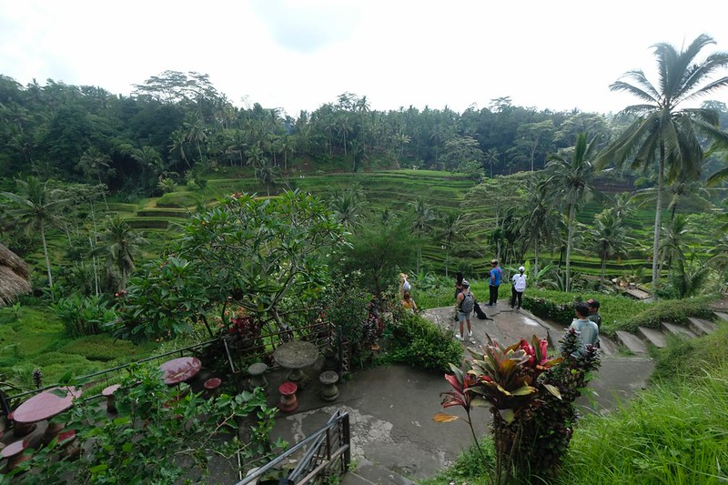 Trip of Wonders Day 11 @Bali 0040.JPG