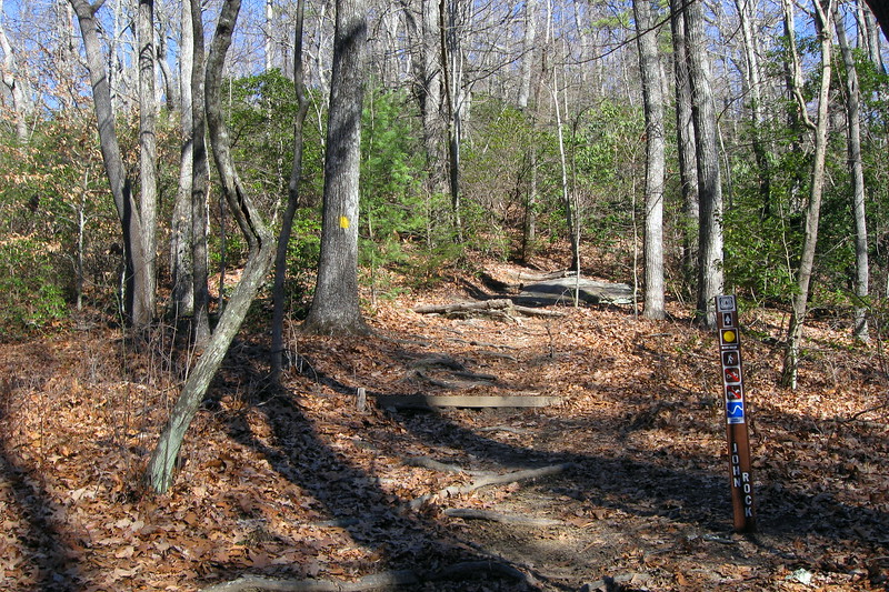 John Rock/Cat Gap Loop Trail Upper Junction (also Cat Gap Bypass Trail) -- 3,100'
