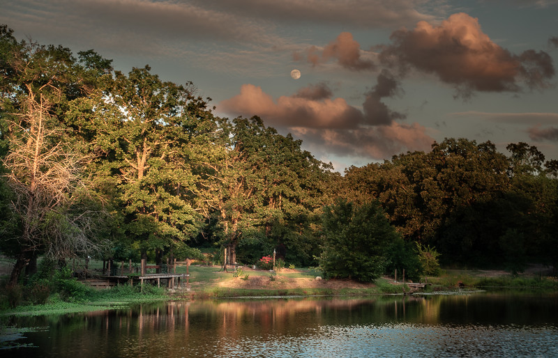Moon Rise at the Pond