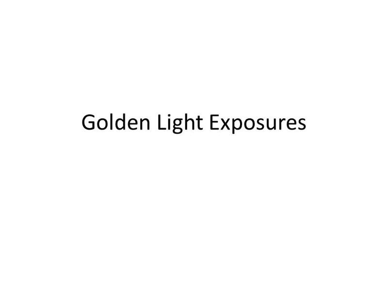 Golden Light Exposures.jpg