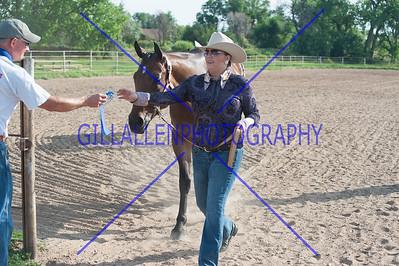 CSHA Halter\Equitation\Pleasure 120715