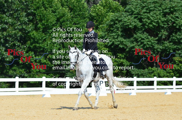 Dressage at Lexington Breed Show July 2018