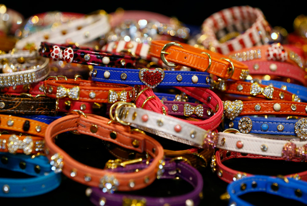 . Collars are displayed for sale during the first day of the Crufts Dog Show in Birmingham, central England March 7, 2013. REUTERS/Darren Staples   (BRITAIN - Tags: ANIMALS SOCIETY)