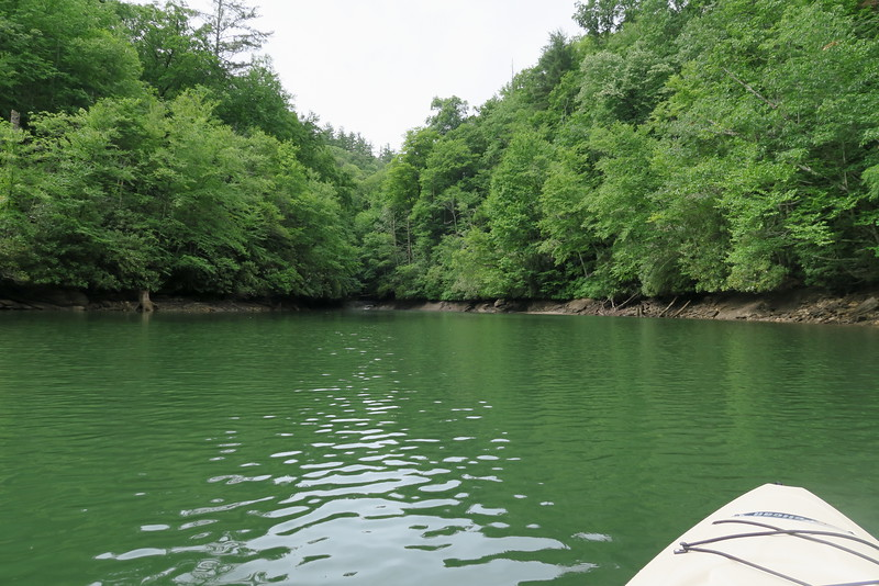 Bear Creek Lake (Flat Creek Cove)