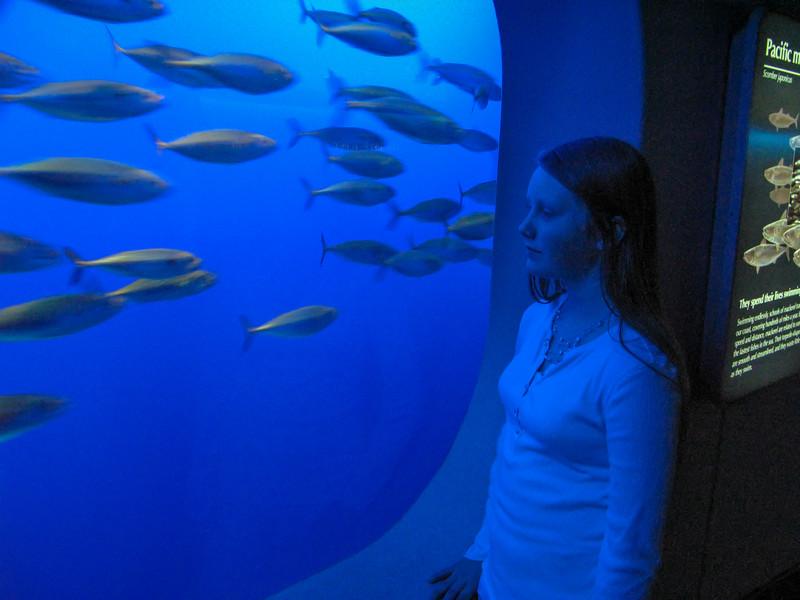acquarium-1-3.jpg