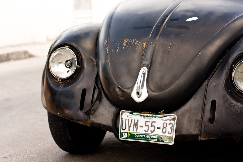i-just-like-license-plates-and-bugs_4487130792_o.jpg