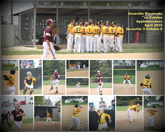 2015 Goreville High School Baseball