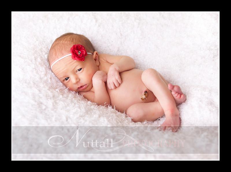 Olivia Newborn-112.jpg