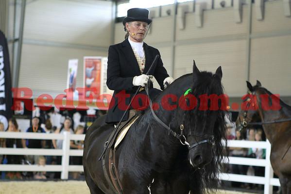 2011 11 10 Equitana Miscellaneous