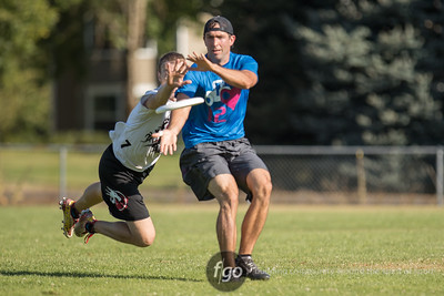 8-20-16 USA Ultimate Triple Crown Tour Pro Flight Finale (Cascade Cup) in Vancouver, Washington - Highlights