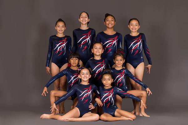 2017-2018 Gymnastics Team