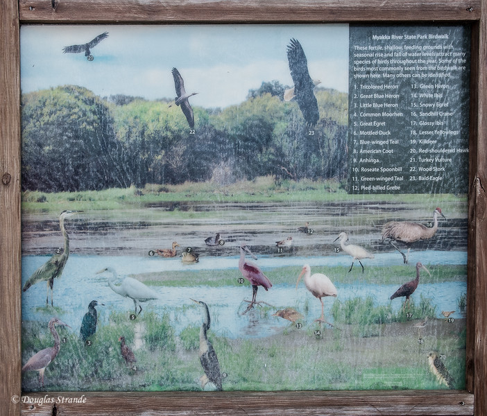 Bird ID plaque at Myakka River Park