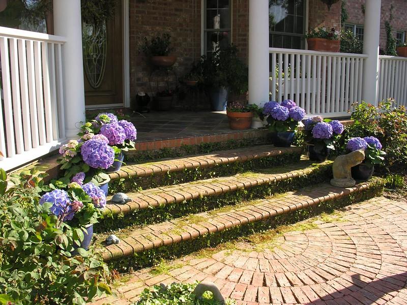 Azelea_Wilmington_2007_034.jpg
