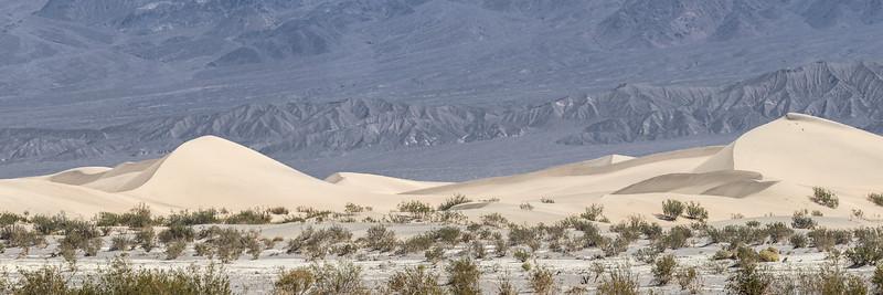 Stovepipe Wells Dunes Multytic